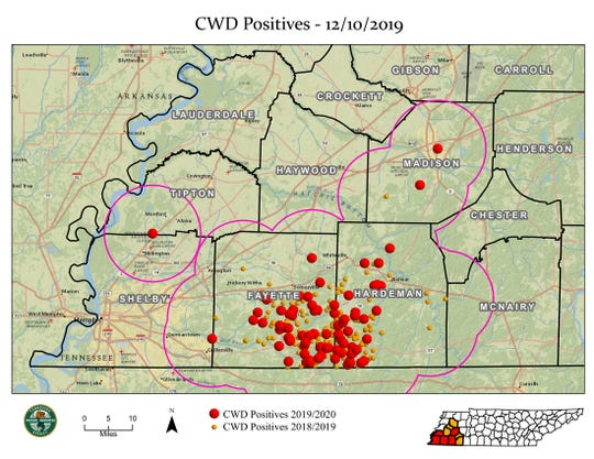 Places where deer have tested positive for chronic wasting disease in West Tennessee during the 2019-20 hunting season.