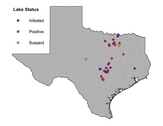 Two lakes were added to the Texas Parks and Wildlife statewide listing as infested with zebra mussels - Lake Marble Falls and Granger Lake.