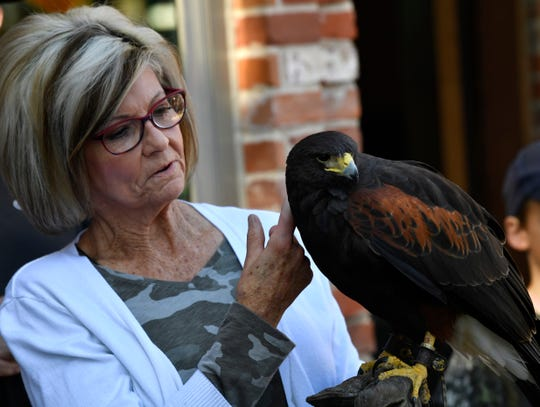 Donna Cate holds Nola, a Harris hawk, outside of the Lyric Theatre in Eastland on Saturday.