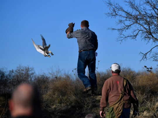 Mark Smith sends Ellie on her way to surprise a duck in a pond Saturday in Eastland County.