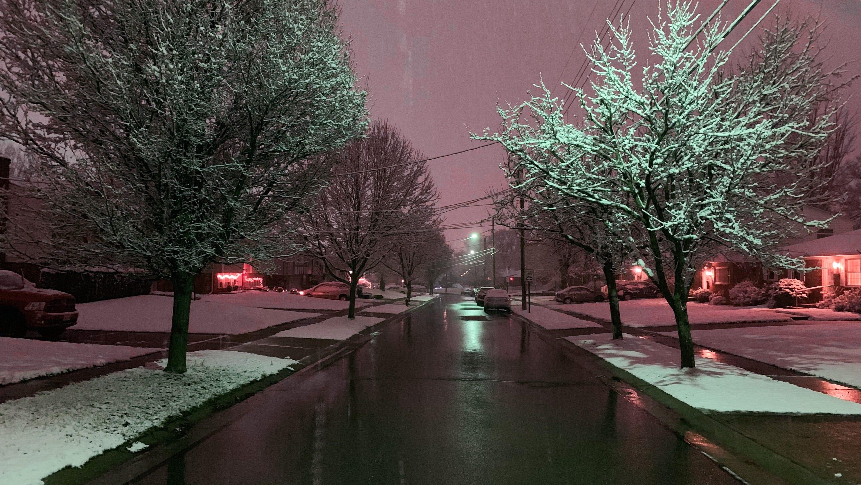 paul winter solstice 2020