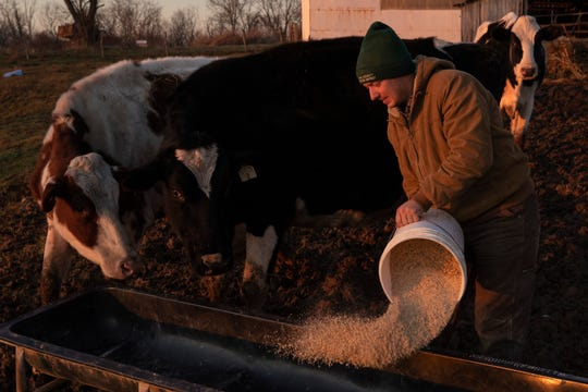 Cattle farmer Curtis Coombs feeds cattle at his family's Jericho Acres Farm in Smithfield, Kentucky. Dec. 11, 2019