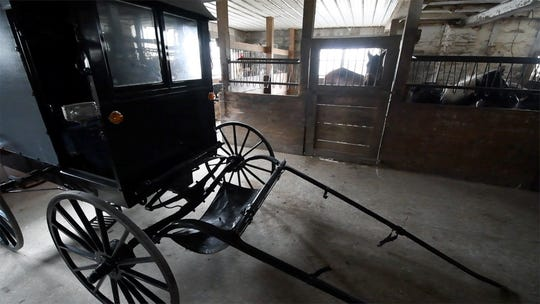 A horse waits to be hitched next to a buggy in the Beiler's barn.
