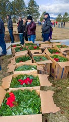 More than 8,000 living wreaths were delivered by truck on Friday and unloaded by 111 volunteers.
