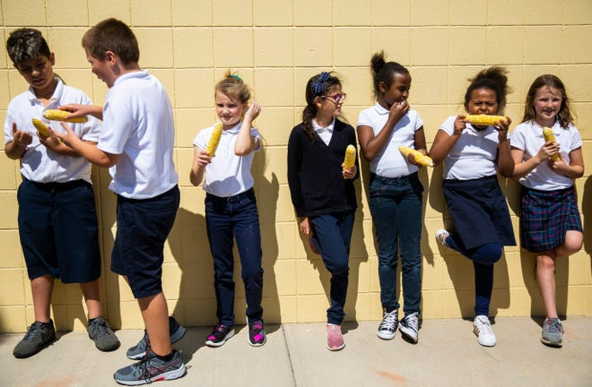 Kids line up with their freshly shucked ears of corn on Tuesday, Aug. 27, 2019 at St. Lambert Elementary School. The school hopes allowing the students to shuck corn will be a practical way for them to learn about locally grown foods. The corn was also served as the vegetable during their school lunch later that week.