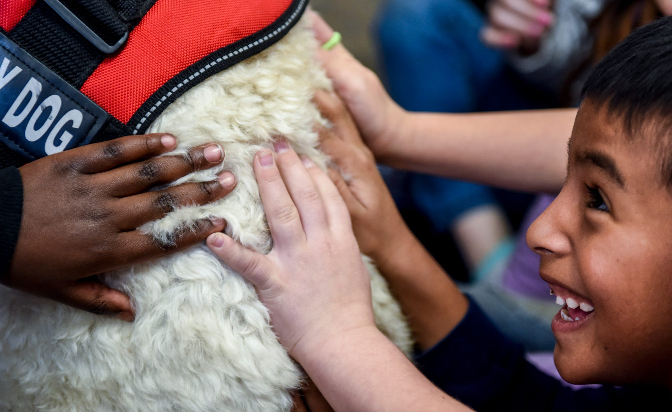 Jostin Cardona, 6, pets Maggie the golden doodle on Friday, Nov. 22, 2019 at Hayward Elementary School. First grade teacher Christina Godshall brought Maggie the golden doodle as a therapy dog for students and staff.