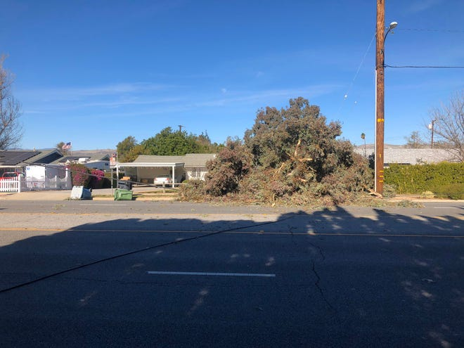 A fallen tree on Royal Avenue in west Simi Valley damaged a gas line and knocked down overhead power and communication lines Monday.