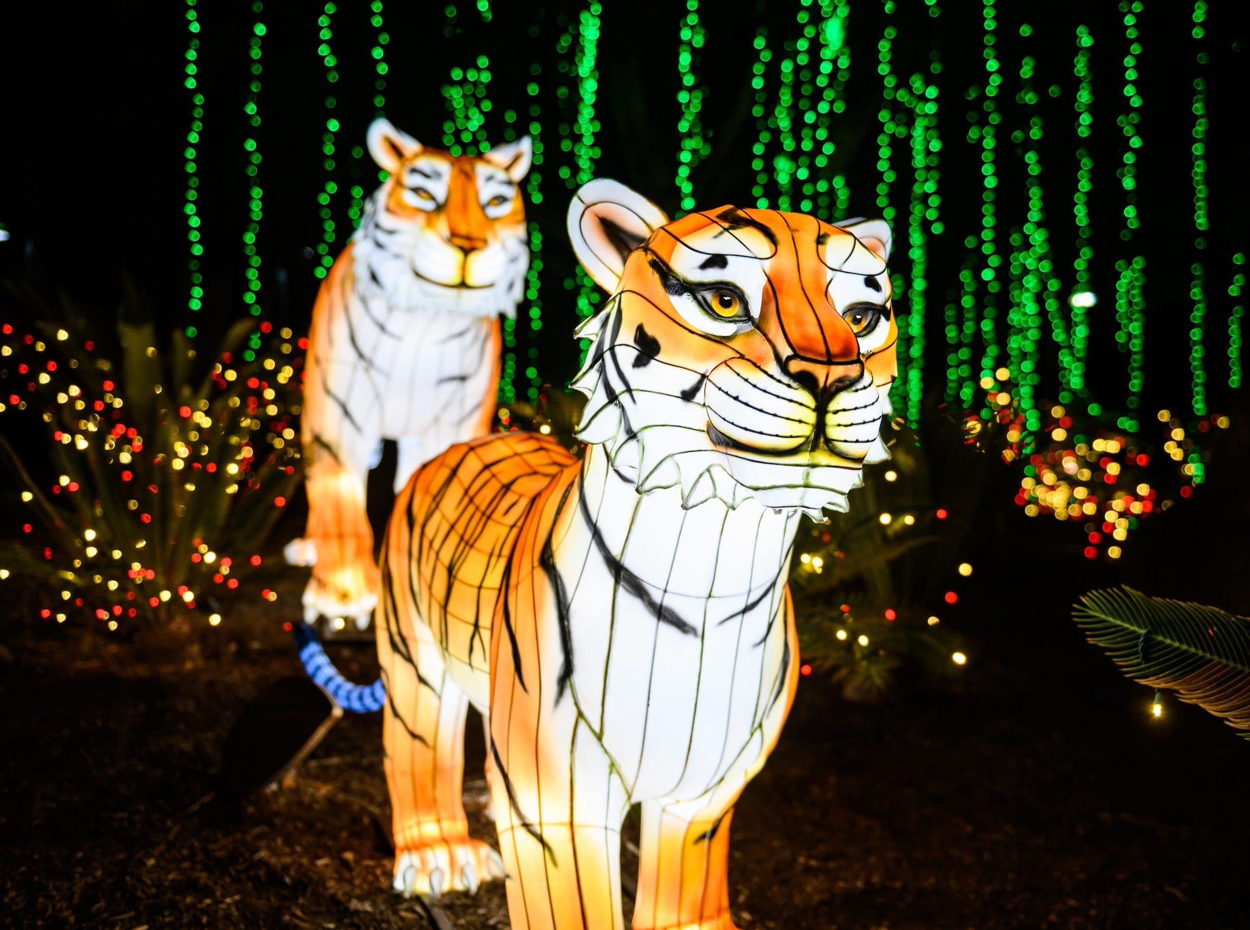 Zoo light displays: Celebrate the