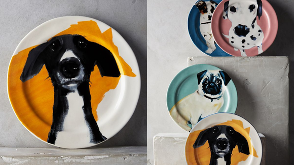 Best gifts under $20: Dog plate