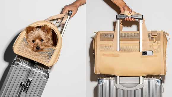 Best gifts for travelers: Air Travel Carrier