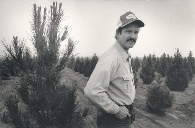 Bruce Dugger on his South Texas Christmas tree farm near Robstown in November 1985. The Coastal Bend had several Christmas tree farms in the 1980s before blight and tip moths ruined the business.