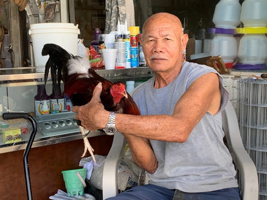 "Roberto Davo, 79, owner of Pacific Gamefowl Supply, in Agat, displays one of his fighting roosters, a ""Kelso Roundhead,"" Dec. 12 at the entrance to his warehouse store."