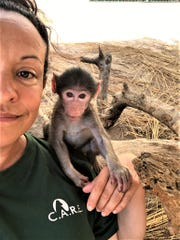 Orphaned baboon Bodhi bonds with Cammy Montoya in the nursery.