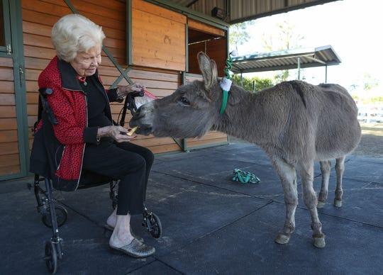 Thella Muncy feeds an apple to her pet donkey, Zeke, in Bermuda Dunes, December 16, 2019.
