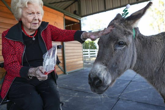 Thella Muncy of Indian Wells has been close with her pet donkey Zeke for the last 32 years. Boarding Zeke with Forever Free Horse Rescue in Temecula,  Muncy, now 101, doesn't get to see Zeke much these days, but rescue founder Yvonne Walls brought the miniature donkey to her Bermuda Dunes property for a visit on December 16, 2019. It was the first time the two had seen each other in more than a year.