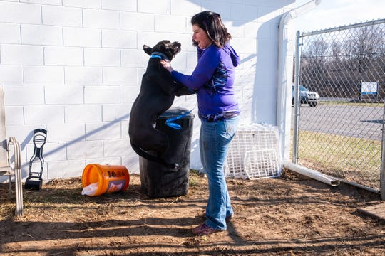 St. Clair County Animal Control Director Erika Stroman plays with Beau, a 1-year-old mix, Tuesday, Dec. 17, 2019, at St. Clair County Animal Control. Beau is one of the dogs up for adoption that has had an extended stay at the shelter.