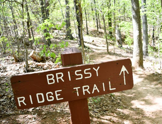 A sign marks the Brissy Ridge Trail at Paris Mountain State Park.