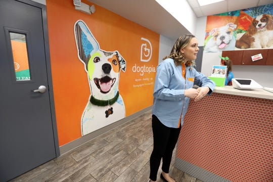 Dogtopia's vice president of Operations Kayla Seely talks about Dogtopia of Yorktown, a doggie daycare facility, Dec. 16, 2019. The facility also offers boarding and spa services.