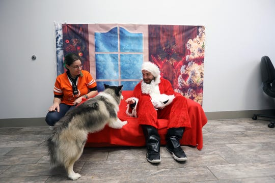 Canine coach Dillon Kuperberg, dressed as Santa, offers one-year-old Dakota, a Pomeranian Husky mix known as Pomsky, a treat during photo day at Dogtopia, a doggie daycare facility in Yorktown Dec. 16, 2019. The facility also offers boarding and spa services.