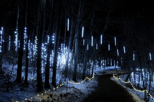 The Icicle Forest is a popular setting for proposals during WPS Garden of Lights at Green Bay Botanical Garden.