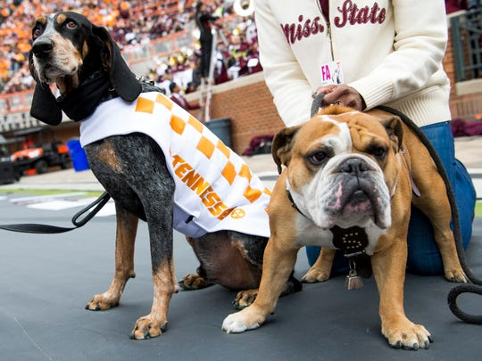 Smokey and Bully hang out with each other on the sidelines during Tennessee's home game against Mississippi State at Neyland Stadium on Saturday, Oct. 12, 2019.