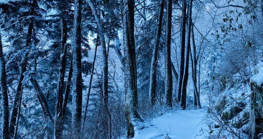 Bill Ramsey photographed the snow covered Appalachian Trail in the Smoky Mountains on Tuesday, Dec. 10, 2019.
