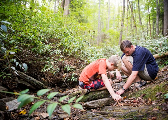 Great Smoky Mountain Institute at Tremont teacher and naturalist Scott Maas, right, helps a student find salamanders in a stream at the Great Smoky Mountains National Park on Tuesday, Oct. 1, 2019.