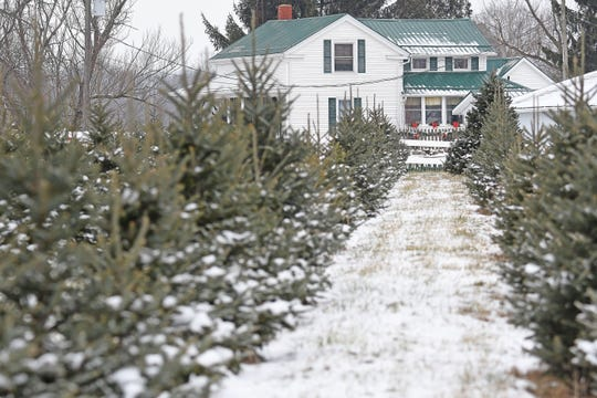 Kleerview Farm is a popular destination to buy real Christmas trees. It is at 2454 Baughman Road south of Lexington.