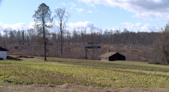 A view across the property the former Camp Echo Trail Girl Scout Camp in Southern York County closed in 2017. The property was logged in 2018.