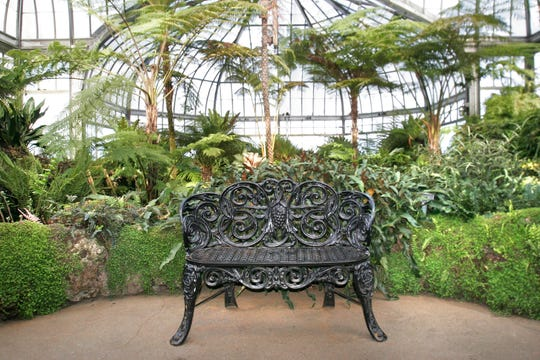 A visit to the Belle Isle Conservatory in January is the perfect cure for the after-holiday blues.