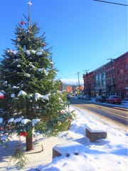 A light December snowfall covered the village Christmas tree this week in Trumansburg.