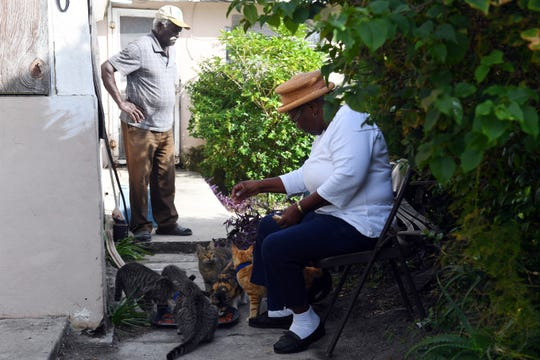 Mervin and Melvina McPhee sit on the front walkway of their Gifford home feeding their cats on Monday, Dec. 16, 2019, in Indian River County. After a complaint was filed, animal control told the McPhees they had to keep the cats from wandering the neighborhood or they would have to pay a fine. The McPhees turned the cats over to the Humane Society of Vero Beach and Indian River County to avoid the fees, but eventually had the cats adopted back to them after the cats were vaccinated, spayed and neutered.