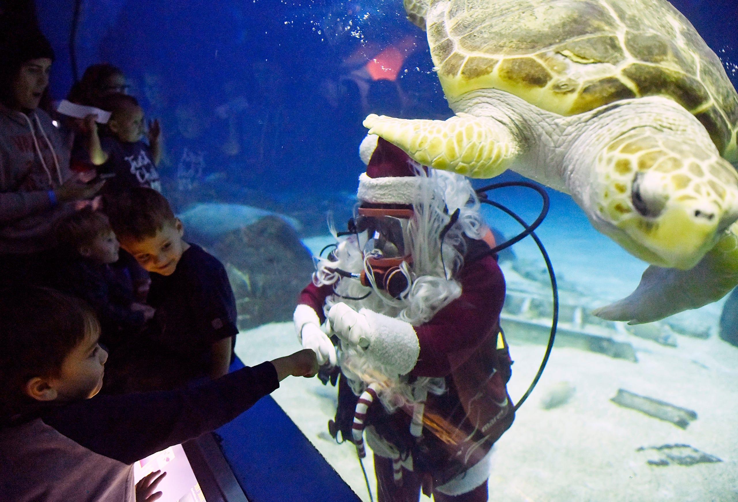PHOTOS: Scuba Santa takes a swim at