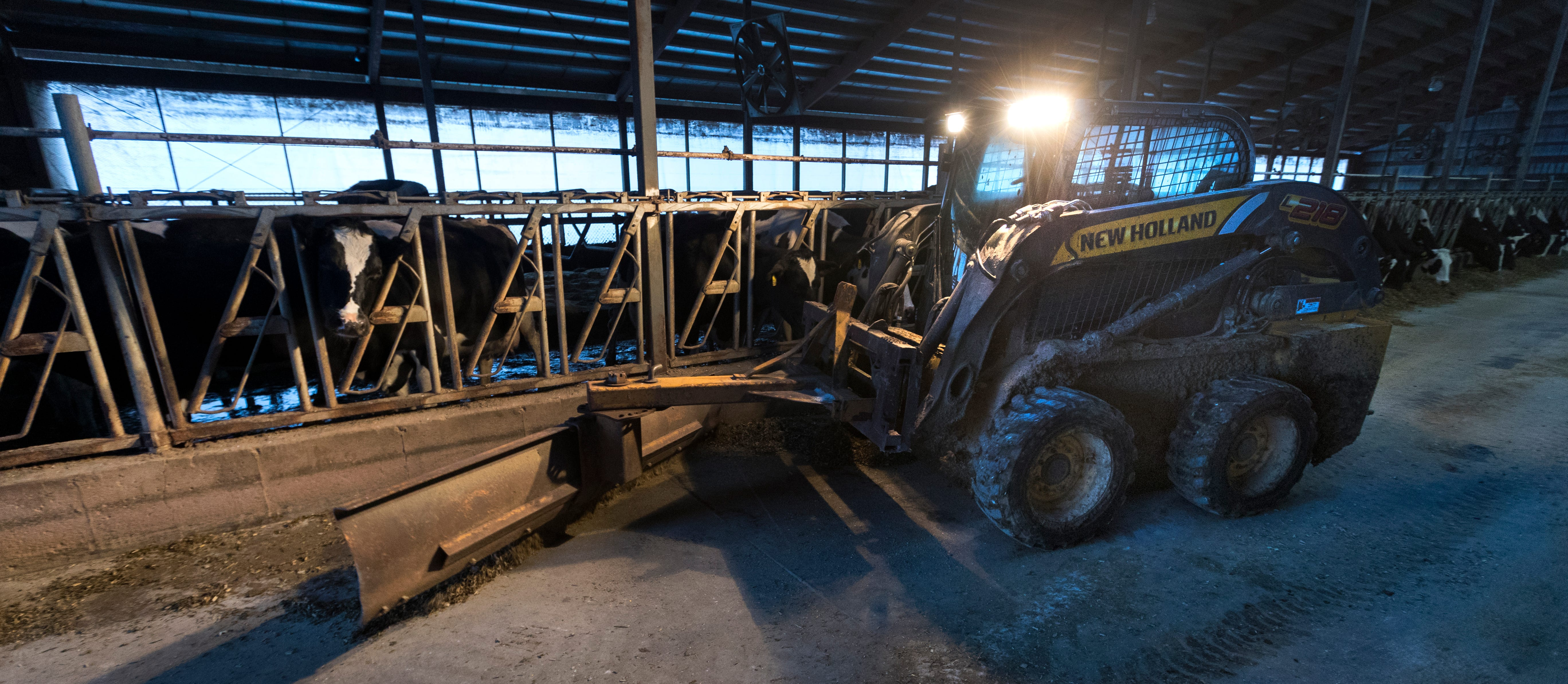 One of three of Paul Jereczek's part-time employees pushes feed for dairy cows on the family farm in the Trempealeau County village of Dodge, Wis.