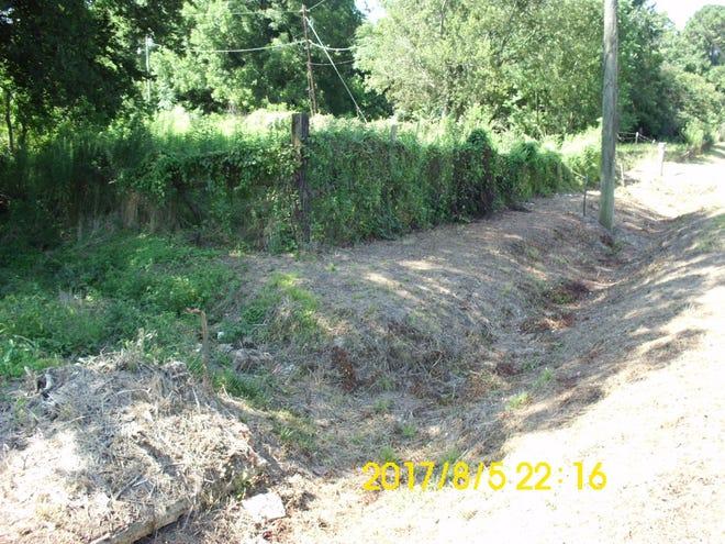 Sankey's overgrown lot on Old Selma Road