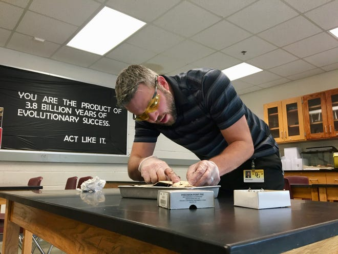 Buffalo Gap High School biology teacher Brad Wygant dissects a synthetic frog model created by PETA on Dec. 17, 2019.