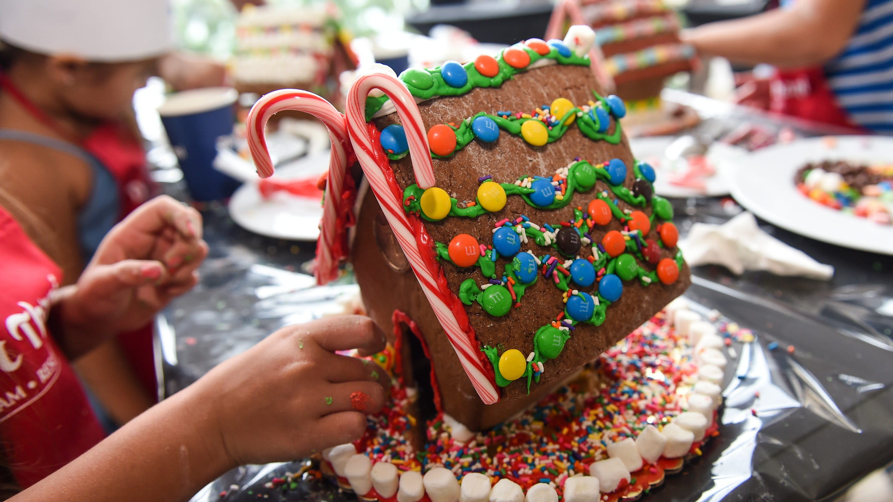 Gingerbread destruction raffle, toilet paper pyramid, Tiehm's buckwheat: News from around our 50 states