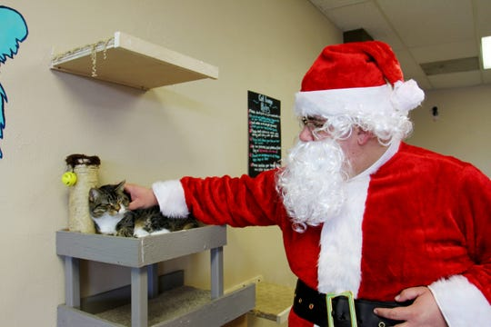 """Chris """"Santa"""" Eckhoff pets Atlas at Mochas and Meows before a Stories with Santa event Dec. 21, 2019."""