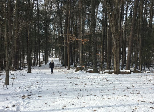 A walker plies a quiet trail at Red Rocks Park in South Burlington on Dec. 22, 2019.