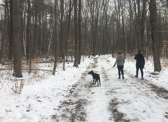 Dog-walkers stroll through Red Rocks Park in South Burlington on Dec. 22, 2019.