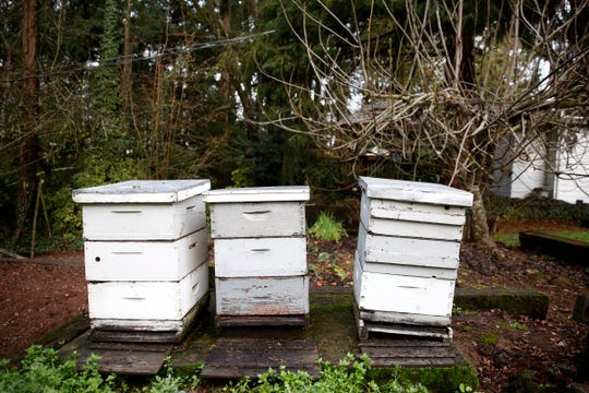 Bee hives in the yard of Mike Rodia, with the Oregon State Beekeepers Association, in Salem on Dec. 23, 2019.