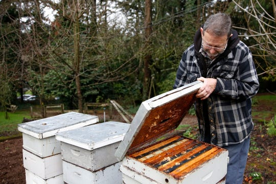 Mike Rodia, with the Oregon State Beekeepers Association, looks over hives in his yard in Salem on Dec. 23, 2019.