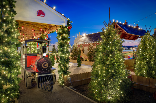 Take a ride on the new Schellville Express where you will be amazed by a tunnel of lights.
