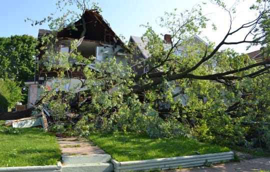Two houses on Lathrup in the Post Addition were damaged from this fallen tree during storm on May 29, 2011.