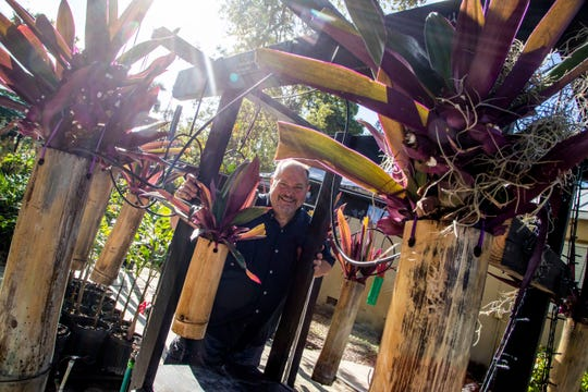 Mann feels like it's a work of art, he picks the right piece of bamboo, then the right plant to go inside. Former Lee County judge, Frank Mann Jr, has opened a 24/7 plant sale business called the Hanging Gardens of Fort Myers. People can buy even when the owner isn't there by sliding money through a mail slot or using their phones to purchase a plant online. He has also said that for those who canÕt afford the plants, they can just take one as a ÒgiftÓ from him.