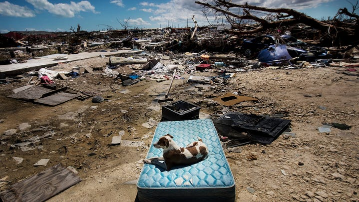 A dog rests on a mattress in the Mudd area of Marsh Harbour on Abacoon Sept 25, 2018 in Bahamas. It was devastated during Hurricane Dorian. This is the area where a high number of deaths came from.