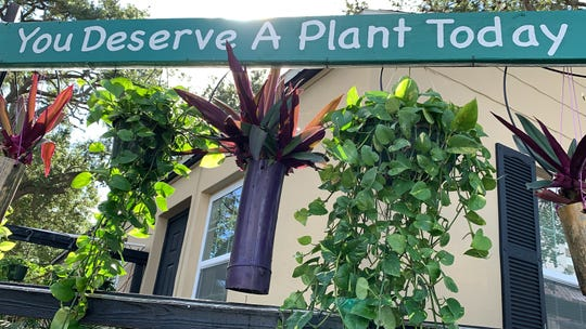 Former Lee County judge, Frank Mann Jr, has opened a 24/7 plant sale business called the Hanging Gardens of Fort Myers. People can buy even when the owner isn't there by sliding money through a mail slot or using their phones to purchase a plant online. He has also said that for those who canÕt afford the plants, they can just take one as a ÒgiftÓ from him.