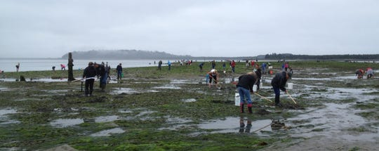 For just $10, Oregonians can play in the mud all year in 2020, with an order of clams as a side dish