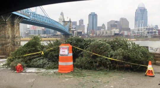 Covington Christmas tree drop-off