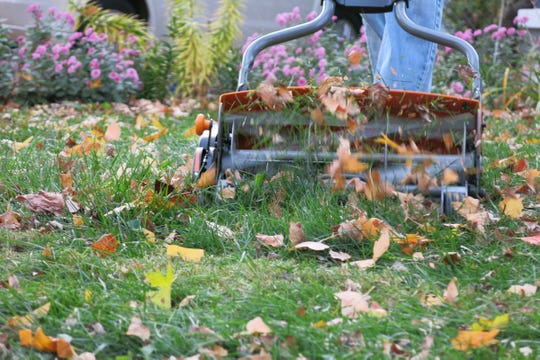If you have a small lawn, a walk-behind reel mower may be all you need. Electric mowers on the market today make quick and tidy work of medium-sized lawns, and they never need gas or an oil change.